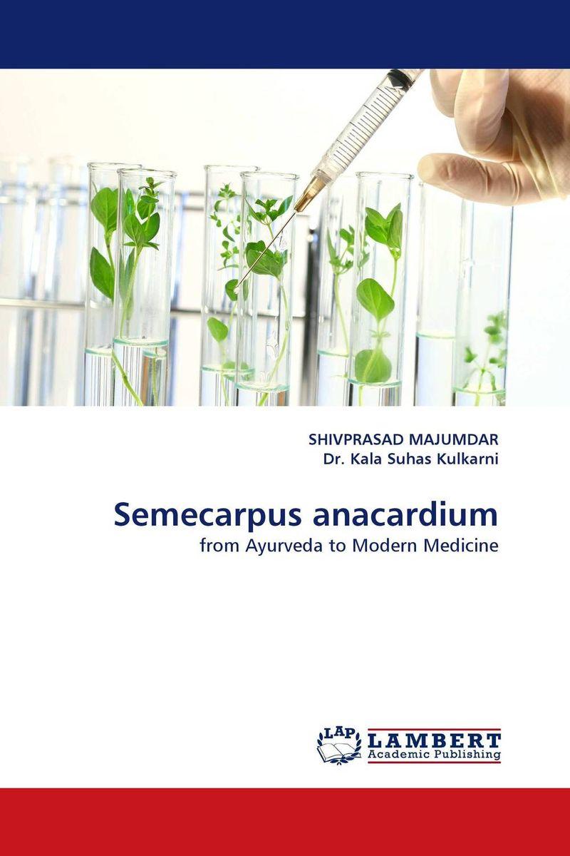 Semecarpus anacardium