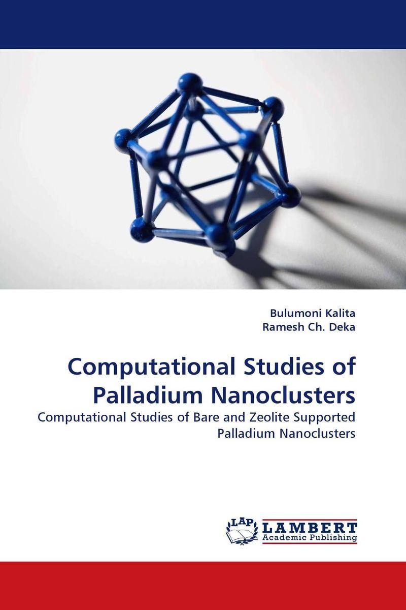 Computational Studies of Palladium Nanoclusters