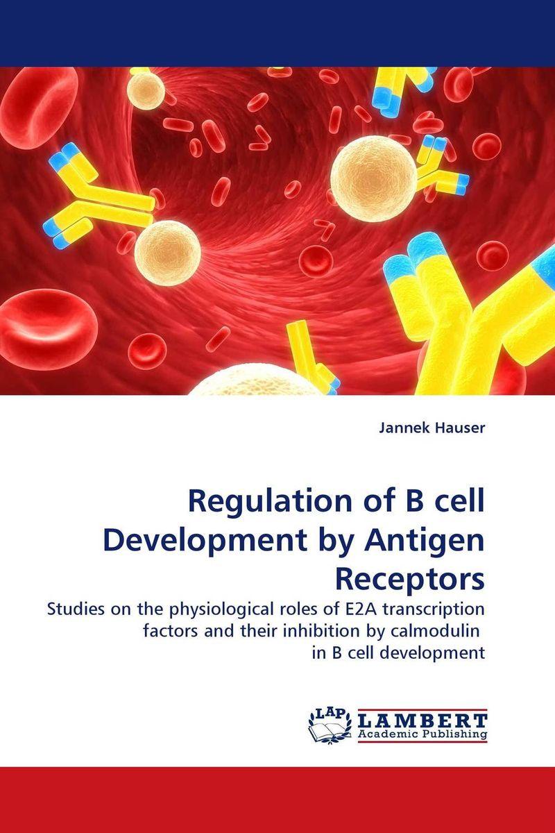 Regulation of B cell Development by Antigen Receptors