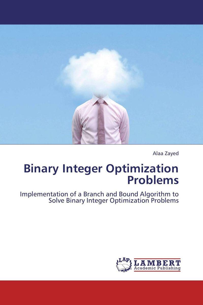 Binary Integer Optimization Problems