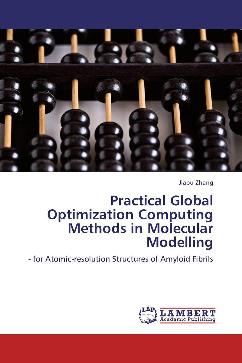 Practical Global Optimization Computing Methods in Molecular Modelling