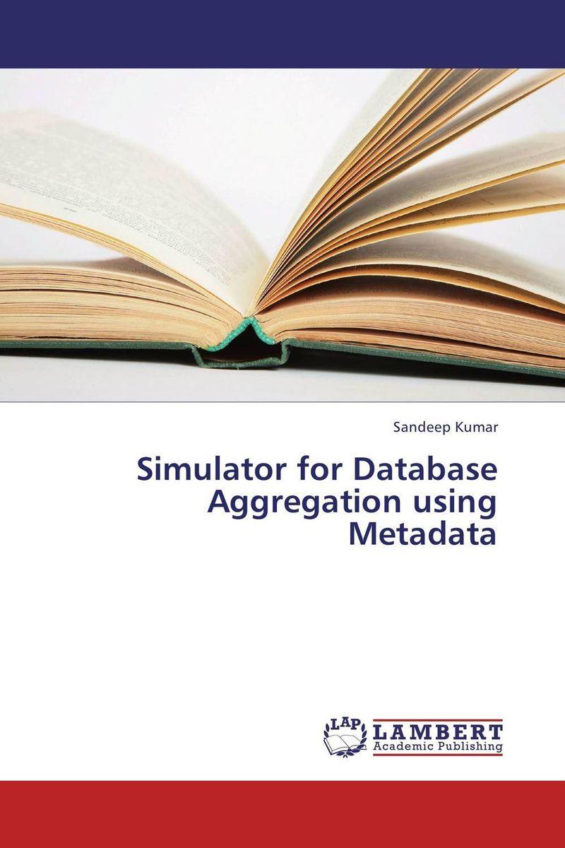 Simulator for Database Aggregation using Metadata