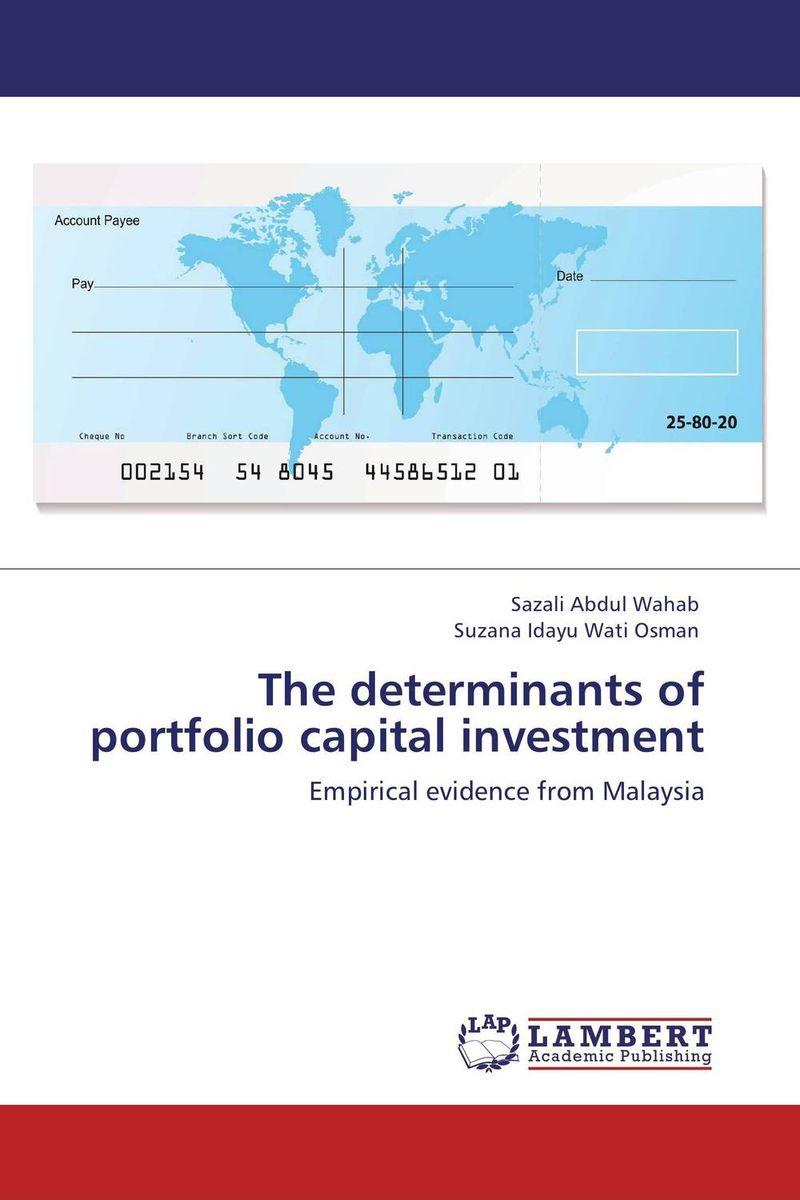 The determinants of portfolio capital investment