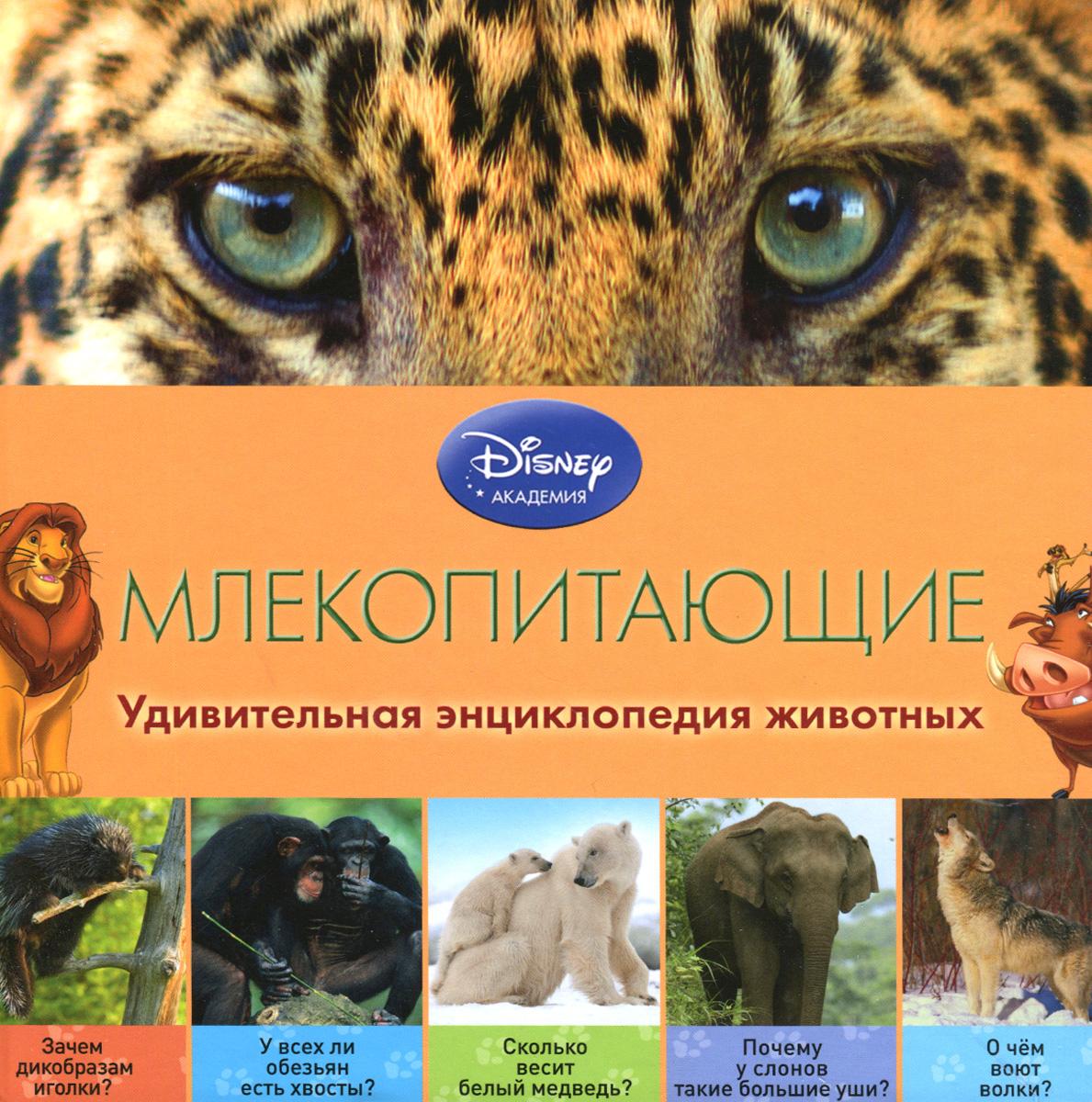 Млекопитающие12296407Герои Disney приглашают маленьких читателей в невероятный мир кошек, собак, жирафов, кенгуру, дельфинов и других млекопитающих животных! В компании любимых персонажей ребёнок узнает о том, зачем обезьянам длинные хвосты, где они принимают горячие ванны, почему медведи впадают в зимнюю спячку, как слоны используют хоботы… Малыша ждут не только любопытнейшие факты, изложенные доступным и увлекательным языком, но и восхитительные фотографии - большие, яркие и красочные! А ещё благодаря этой книге ребёнок разовьёт познавательные способности, кругозор и структурное мышление, а также получит первый опыт работы с энциклопедической литературой. Издание предназначено для детей младшего школьного возраста.