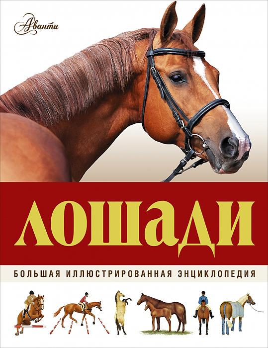 Лошади. Большая иллюстрированная энциклопедия