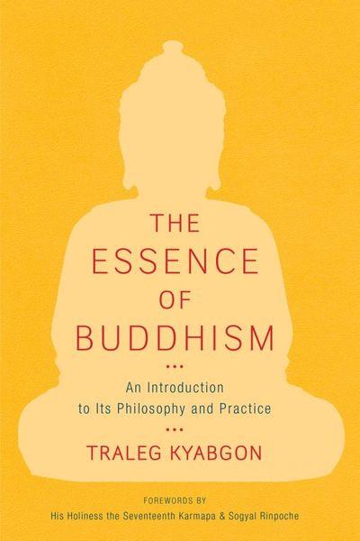 Traleg Kyabgon The Essence of Buddhism zao essence of nature zao essence of nature za005lwdqh82