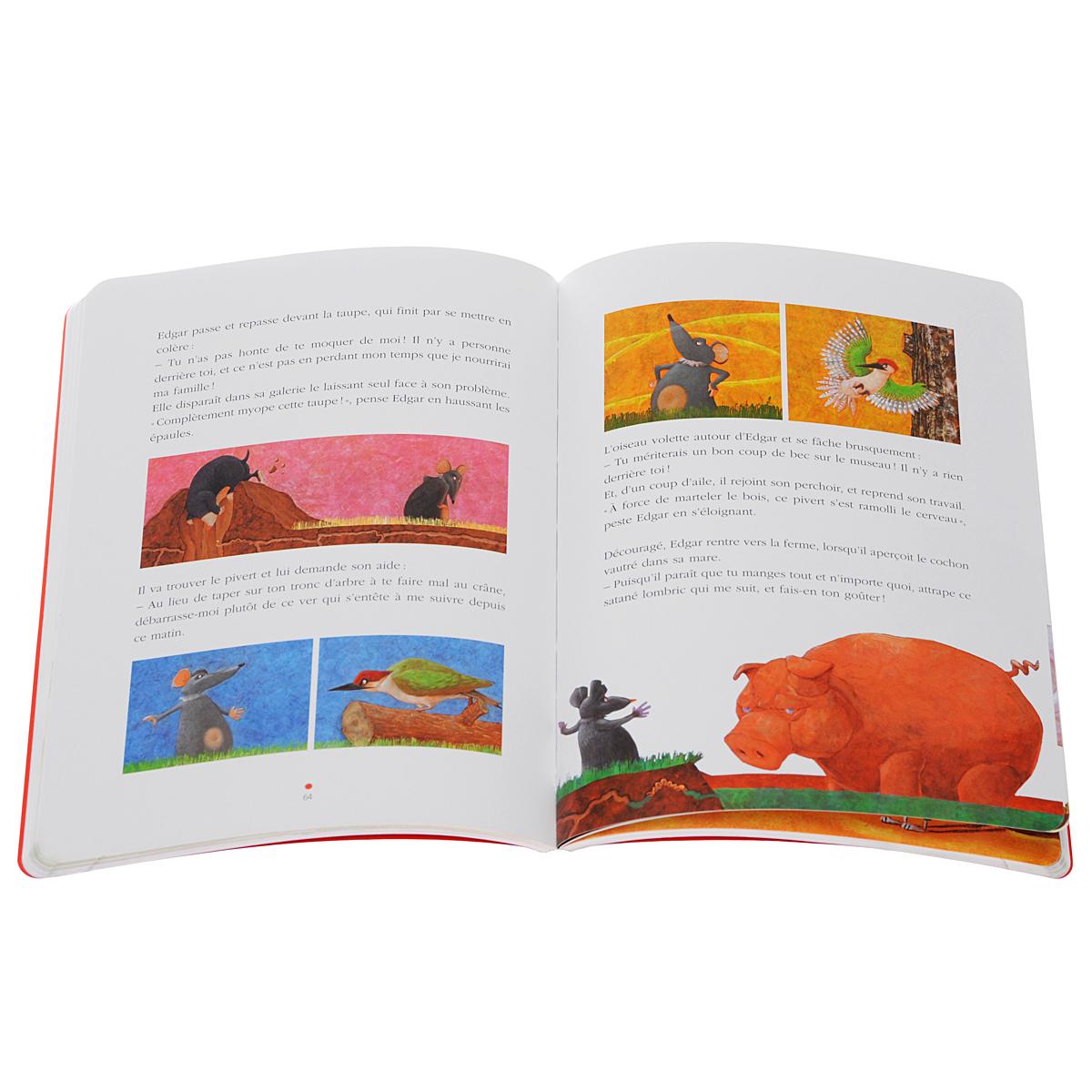 Le Nouvel Edito: CD-Rom Autocorrectif B1 (Cahier D'Exercices)