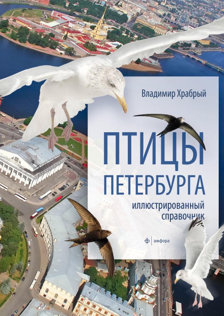 Владимир Храбрый Птицы Петербурга куплю дачу в ленинградской области на авито