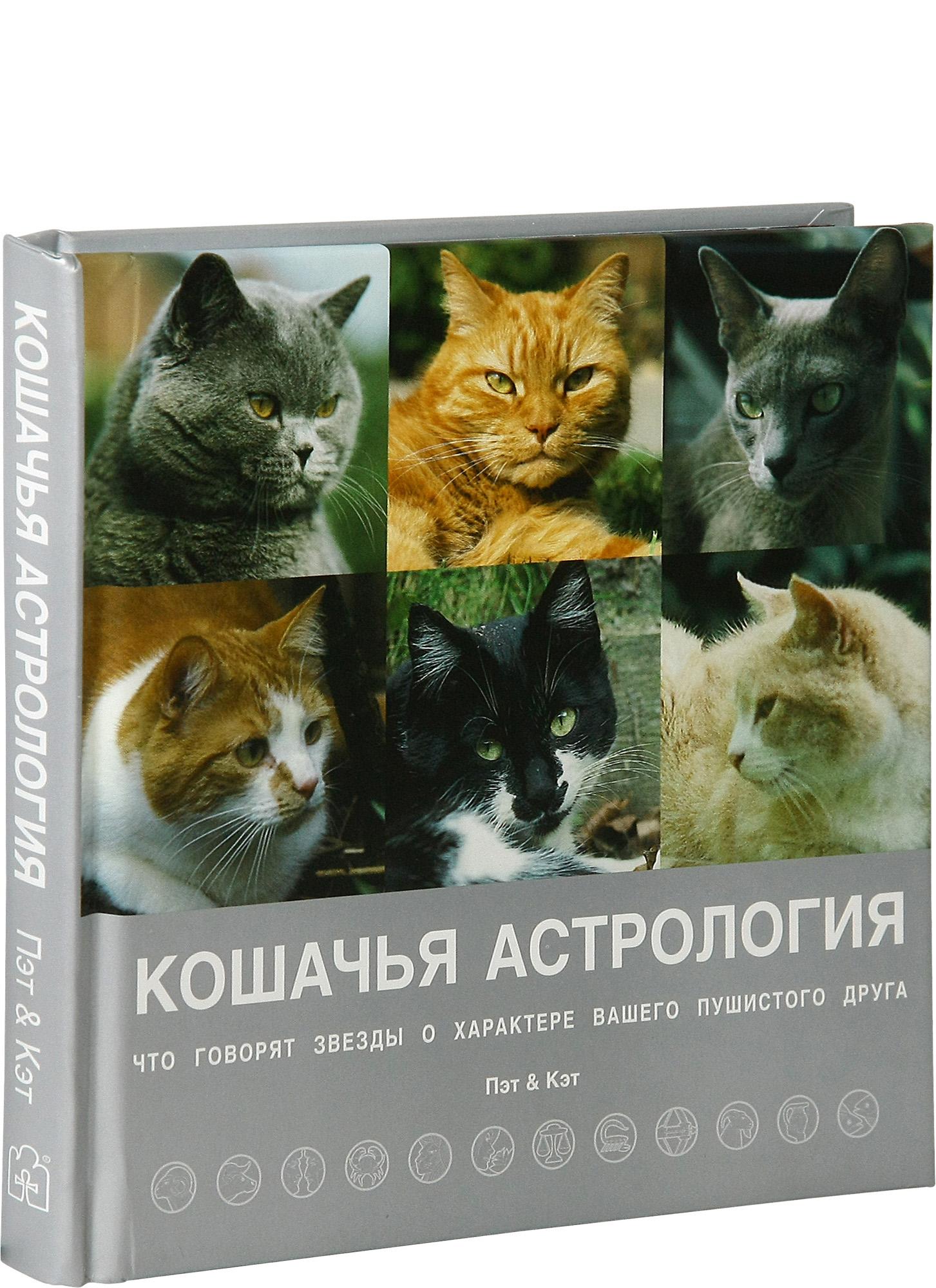 Кошка в дом - счастье в нем (комплект из 4 книг)