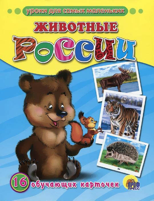 Животные России (набор из 16 обучающих карточек)