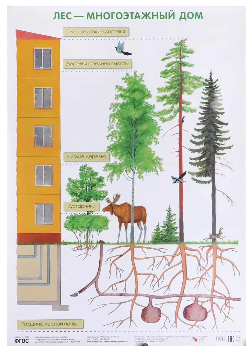 Лес - многоэтажный дом. Плакат
