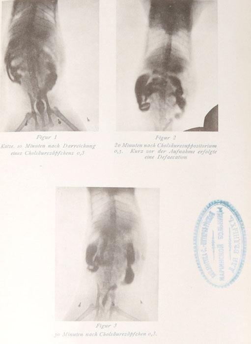 Archiv fur Verdauungs-Krankheiten mit Einschluss der Stoffwechselpatholigie und der Diatetik. Band XVIII