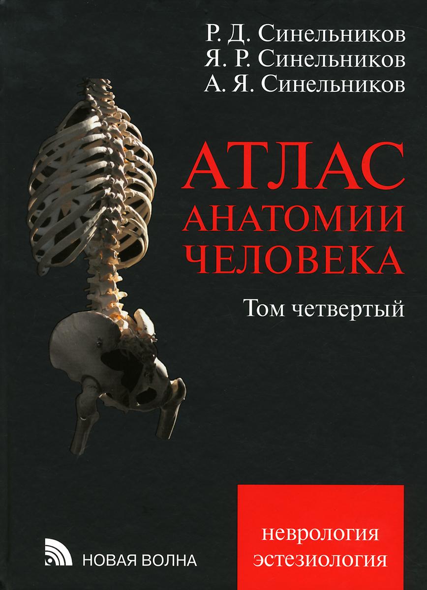 Атлас анатомии человека. Учебное пособие. В 4 томах. Том 4