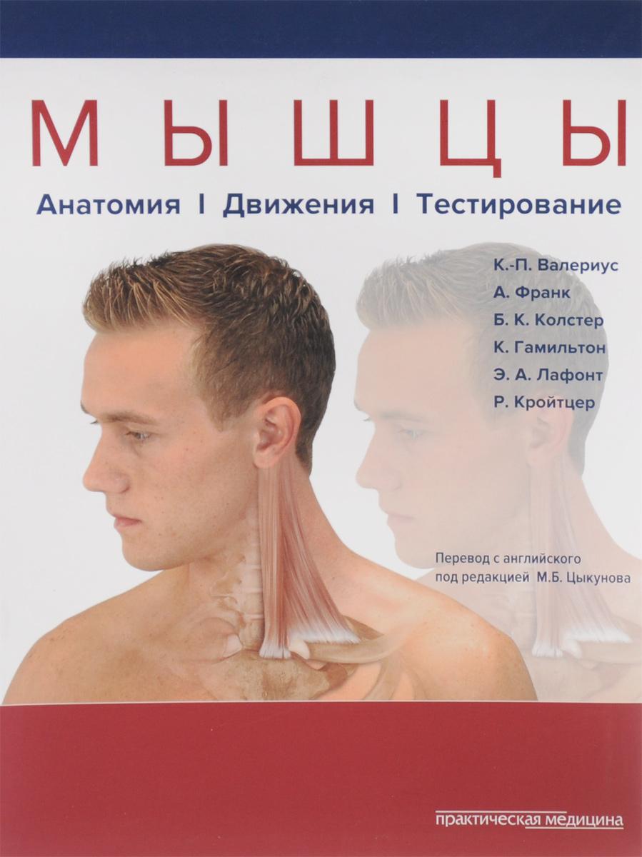 Мышцы. Анатомия. Движения. Тестирование
