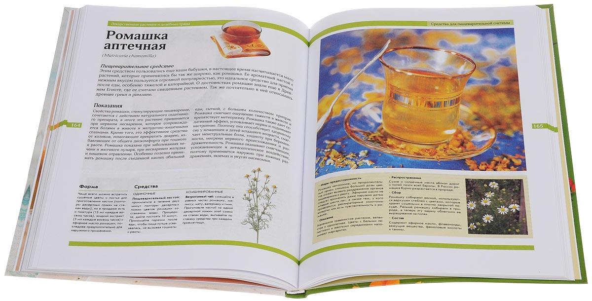 Лекарственные растения и целебные травы