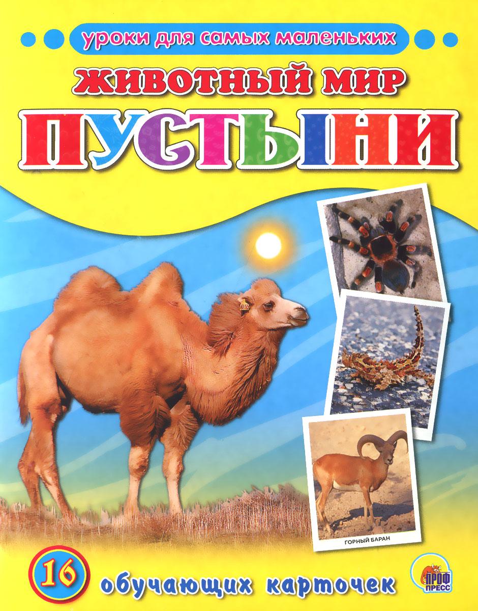Животный мир. Пустыни (набор из 16 обучающих карточек)