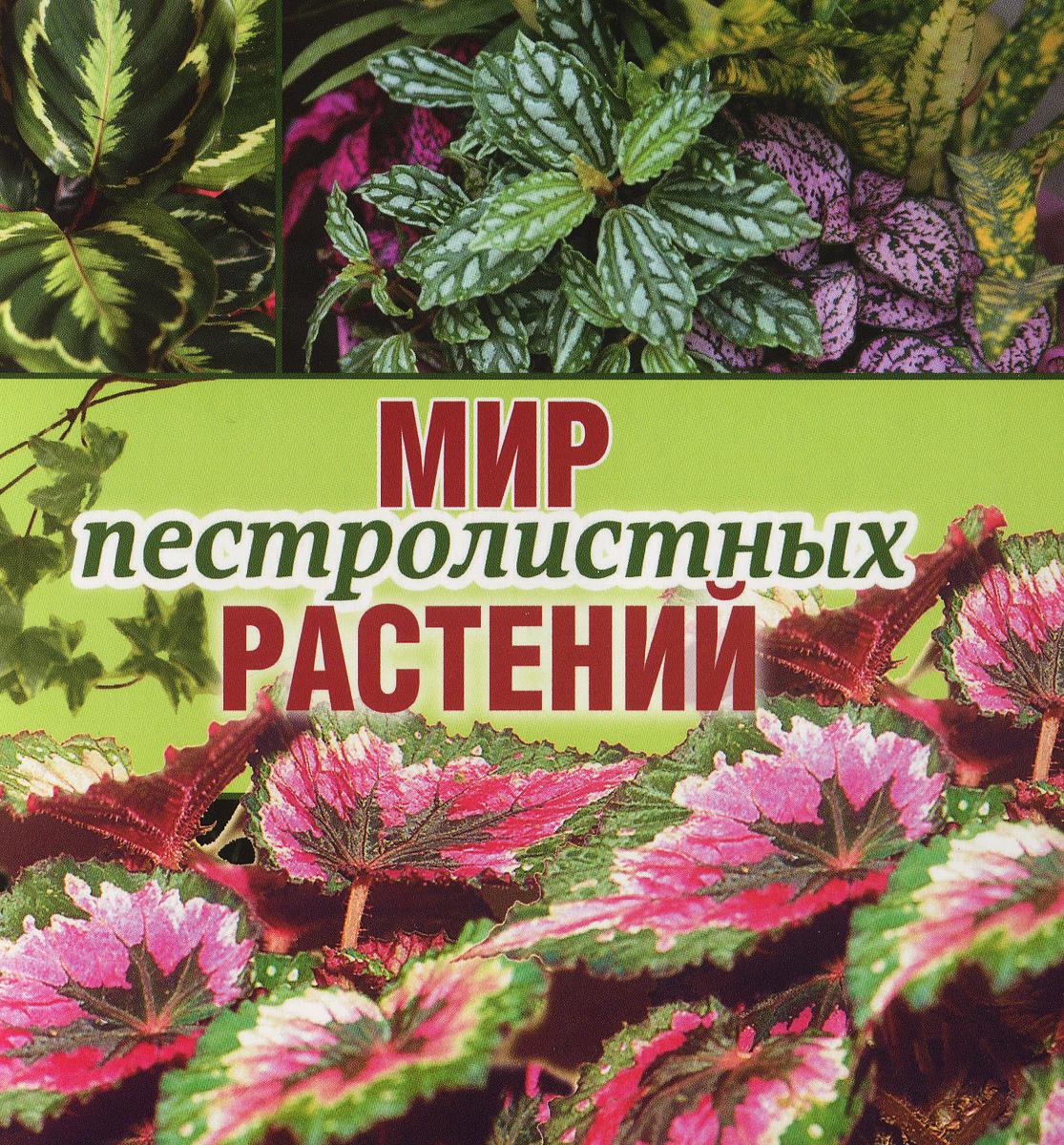 Кузнецова Т. Мир пестролистных растений