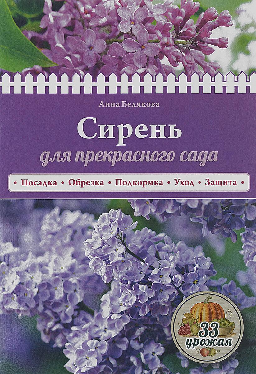 Сирень для прекрасного сада ( 978-5-699-84619-1 )