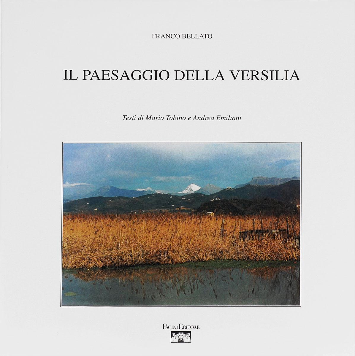 Il paesaggio della Versilia