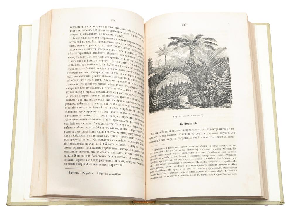 Картины растительности земного шара Людвига Рудольфа