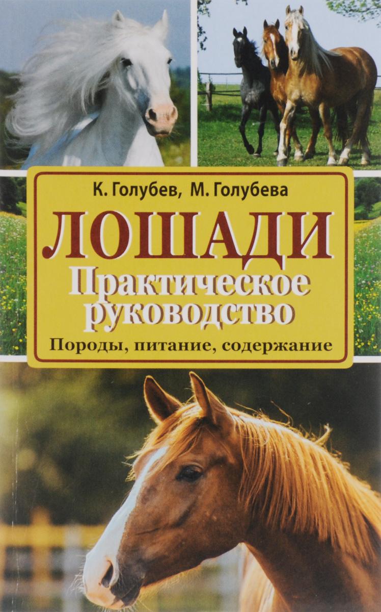 Лошади. Породы, питание, содержание