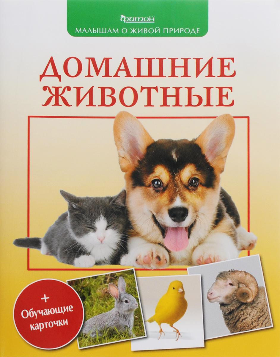 Домашние животные (+ обучающие карточки)