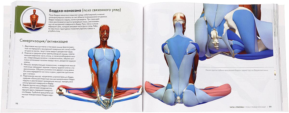 Ключевые позы йоги