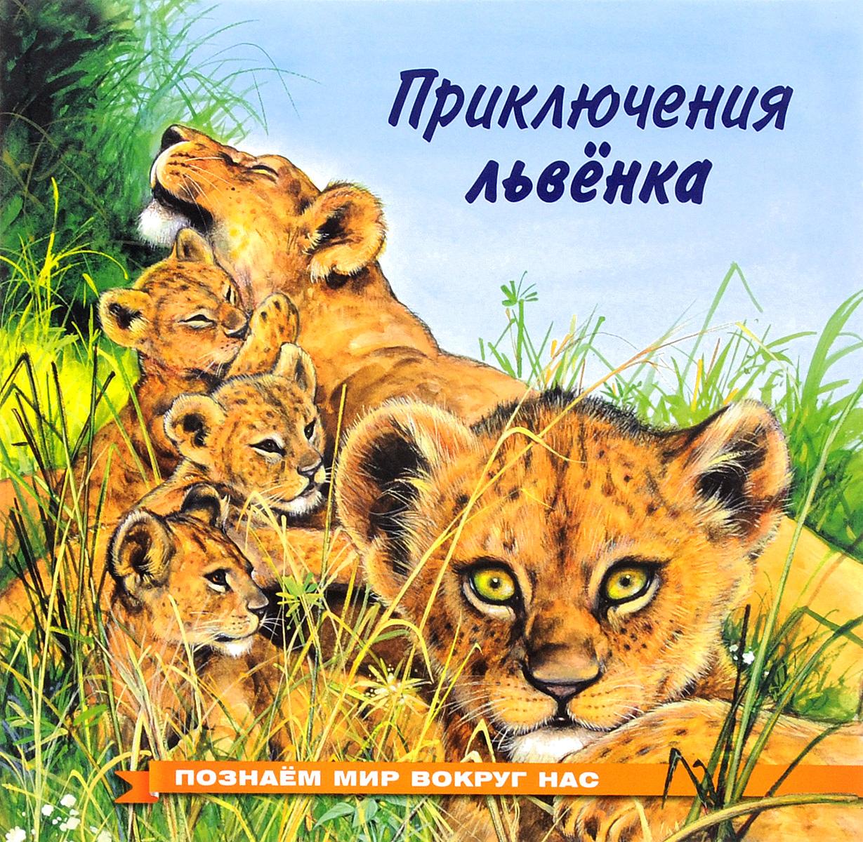 Приключения львенка