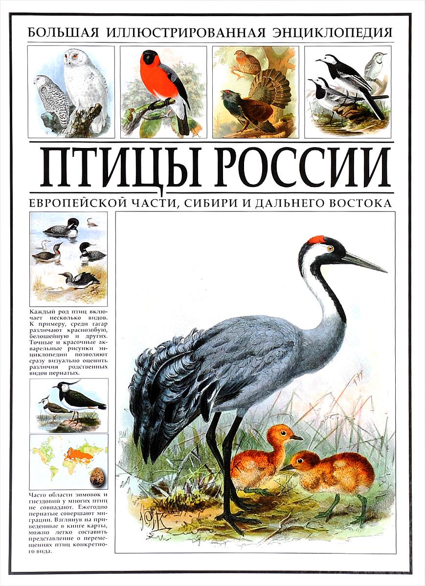 Большая иллюстрированная энциклопедия. Птицы России