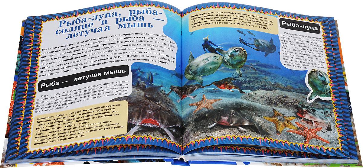 Весь подводный мир