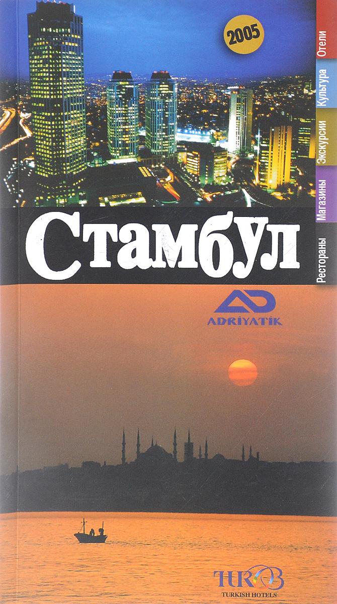 Стамбул для путешественников. История, культура, покупки, отели.
