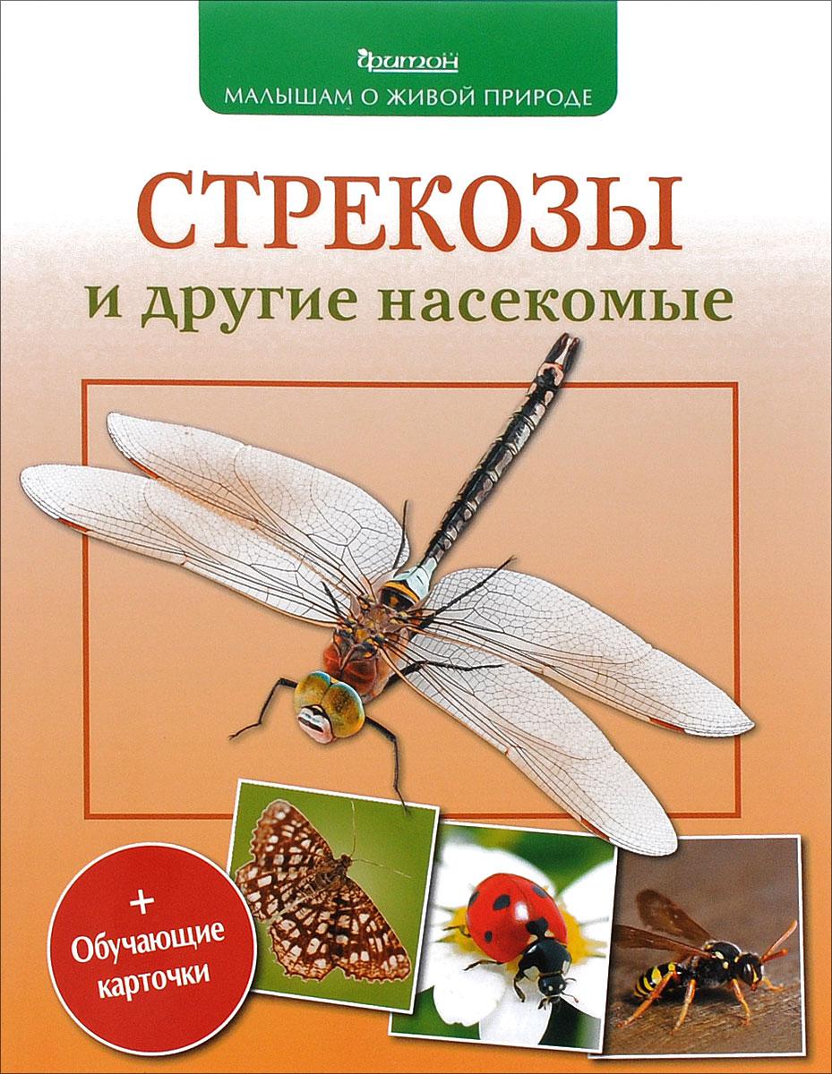 Стрекозы и другие насекомые