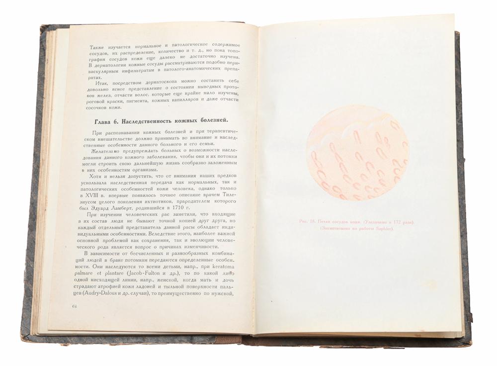 Основы дерматологии. Выпуск II