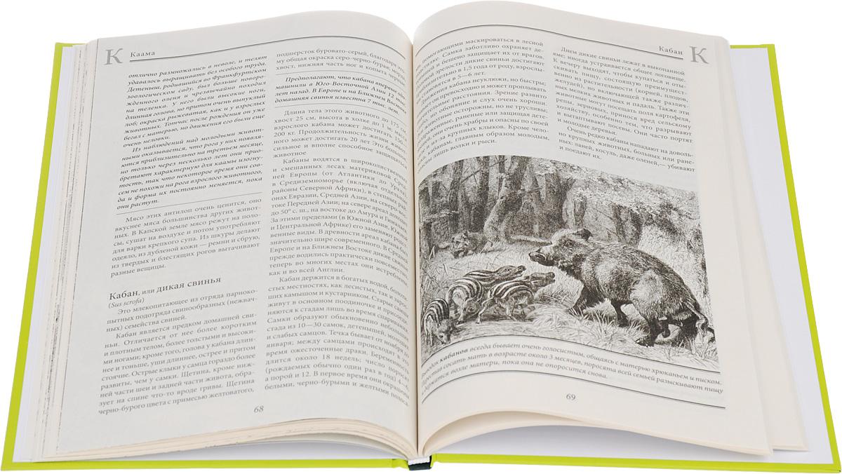Жизнь животных. В 10 томах. Том 2. Млекопитающие. Д-К