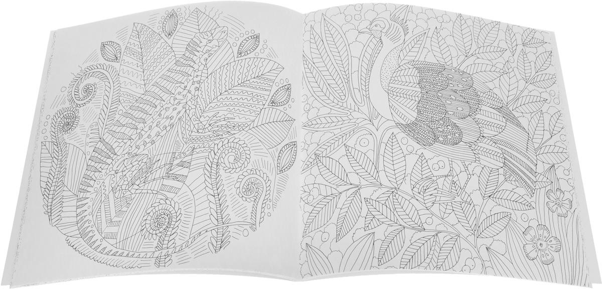 Птицы счастья. Подводное царство. Лес-чародей. Волшебные цветы. Прекрасные незнакомки (комплект из 5 раскрасок)