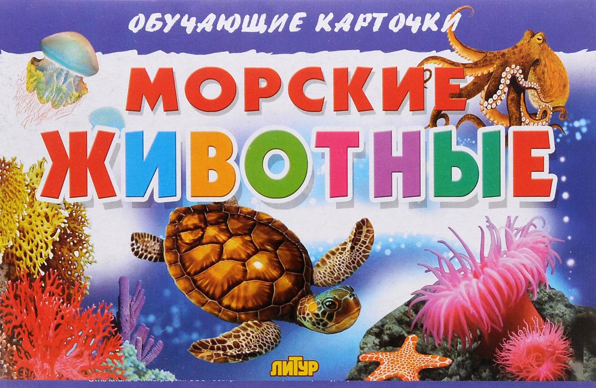 Морские животные (набор из 16 карточек)