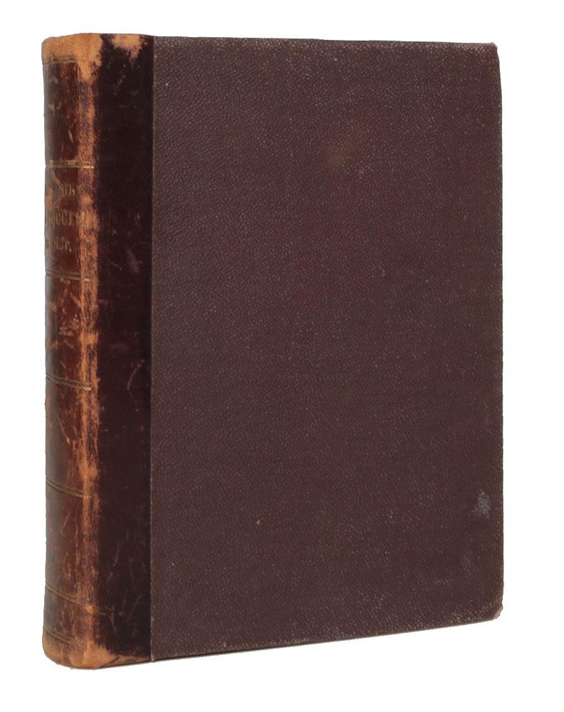 Наполеон в России в 1812 году. Очерк истории Отечественной войны