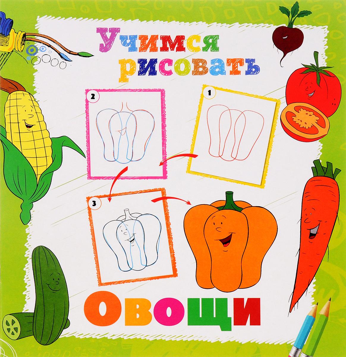 Овощи. Книжка-раскраска