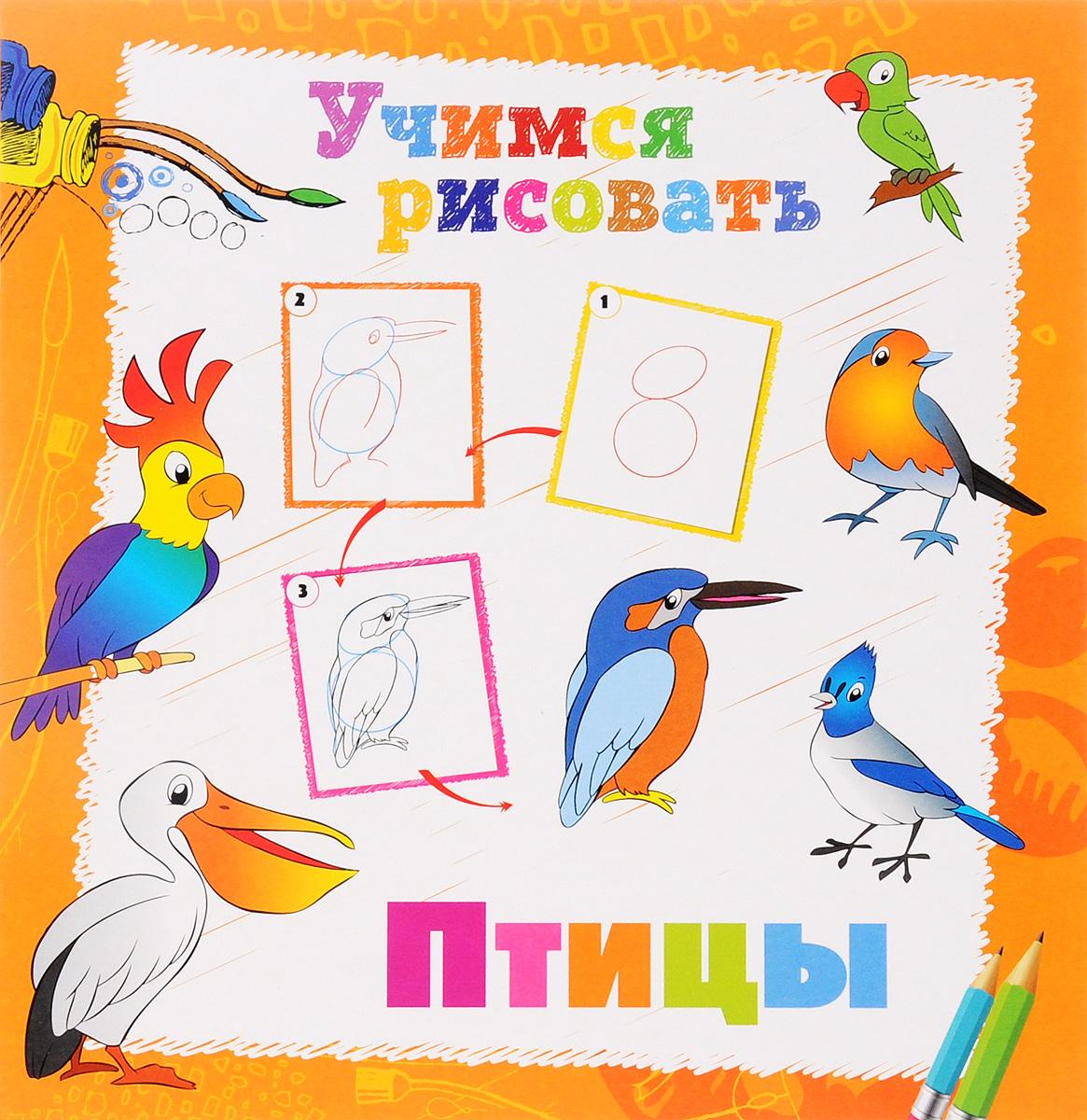 Птицы. Книжка-раскраска12296407Научим ребят рисовать! Многие малыши обожают рисовать! Рисование и раскрашивание - это не только интересное, но и очень полезное занятие. Мы создали серию книжек-раскрасок УЧИМСЯ РИСОВАТЬ, с которыми заниматься рисованием очень весело. Ваш ребенок сможет научиться рисовать животных, птиц, динозавров, фрукты, машины и многое другое, воспользовавшись пошаговыми советами художника. Желаем вам творческих успехов и хорошего настроения!