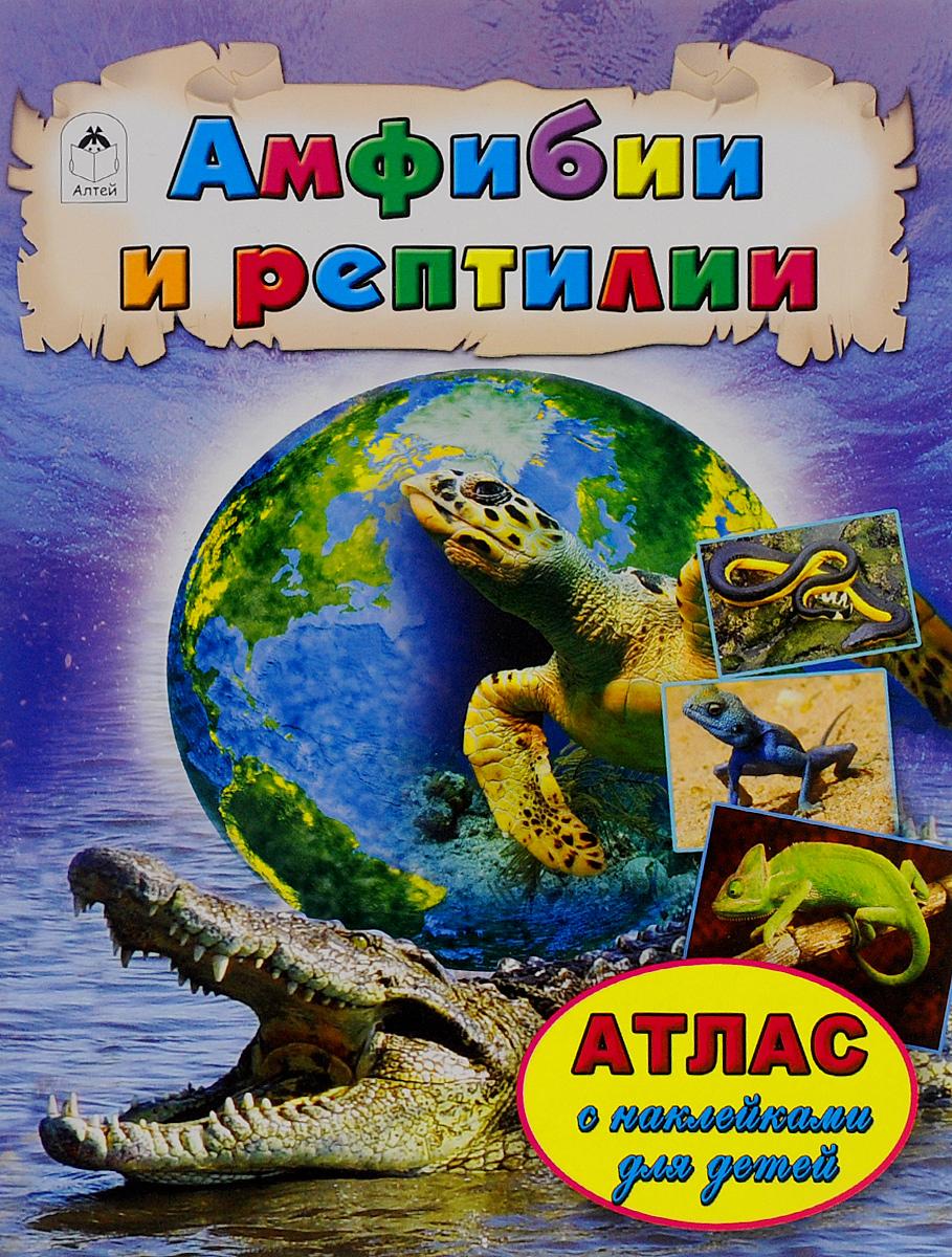Амфибии и рептилии. Атлас (+ наклейки)12296407Ящерицы и черепахи, змеи и крокодилы, а также давно вымершие динозавры - это пресмыкающиеся, или рептилии, - дышащие лёгкими позвоночные животные, кожа которых покрыта роговой чешуёй или щитками, что позволяет легко отличить этих животных от наделённых тонкой кожей земноводных (например, ящериц от тритонов и саламандр). В мире известно около 9400 видов пресмыкающихся, на территории России обитает 72 вида. Для чтения взрослыми детям.