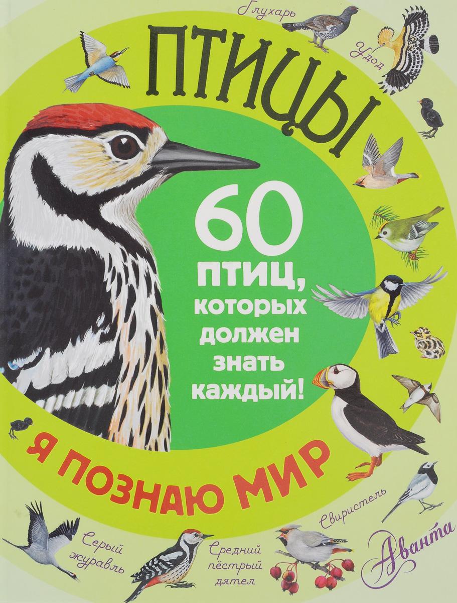 Птицы. 60 птиц, которых должен знать каждый12296407В книге рассказывается о самых обычных птицах, которых каждый встречает почти ежедневно. Юные читатели и их родители прочитают и увидят на рисунках, как узнать каждую птицу и отличить от других, даже если они похожи, когда и где можно встретить, на что обращать внимание. Самые интересные факты помогут запомнить пернатых и сразу же узнать при встрече. Для младшего школьного возраста.
