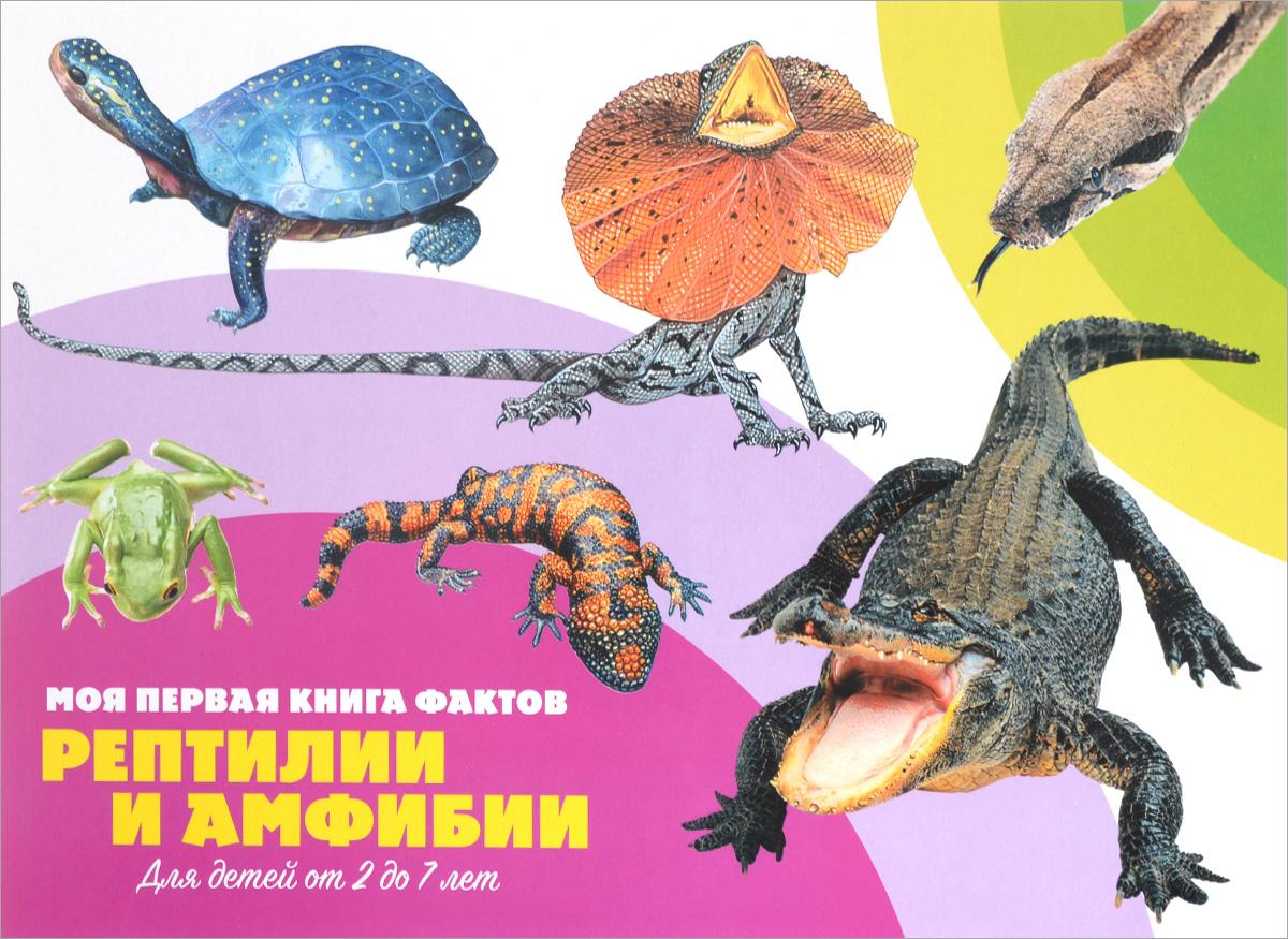 Рептилии и амфибии (+ наклейки)