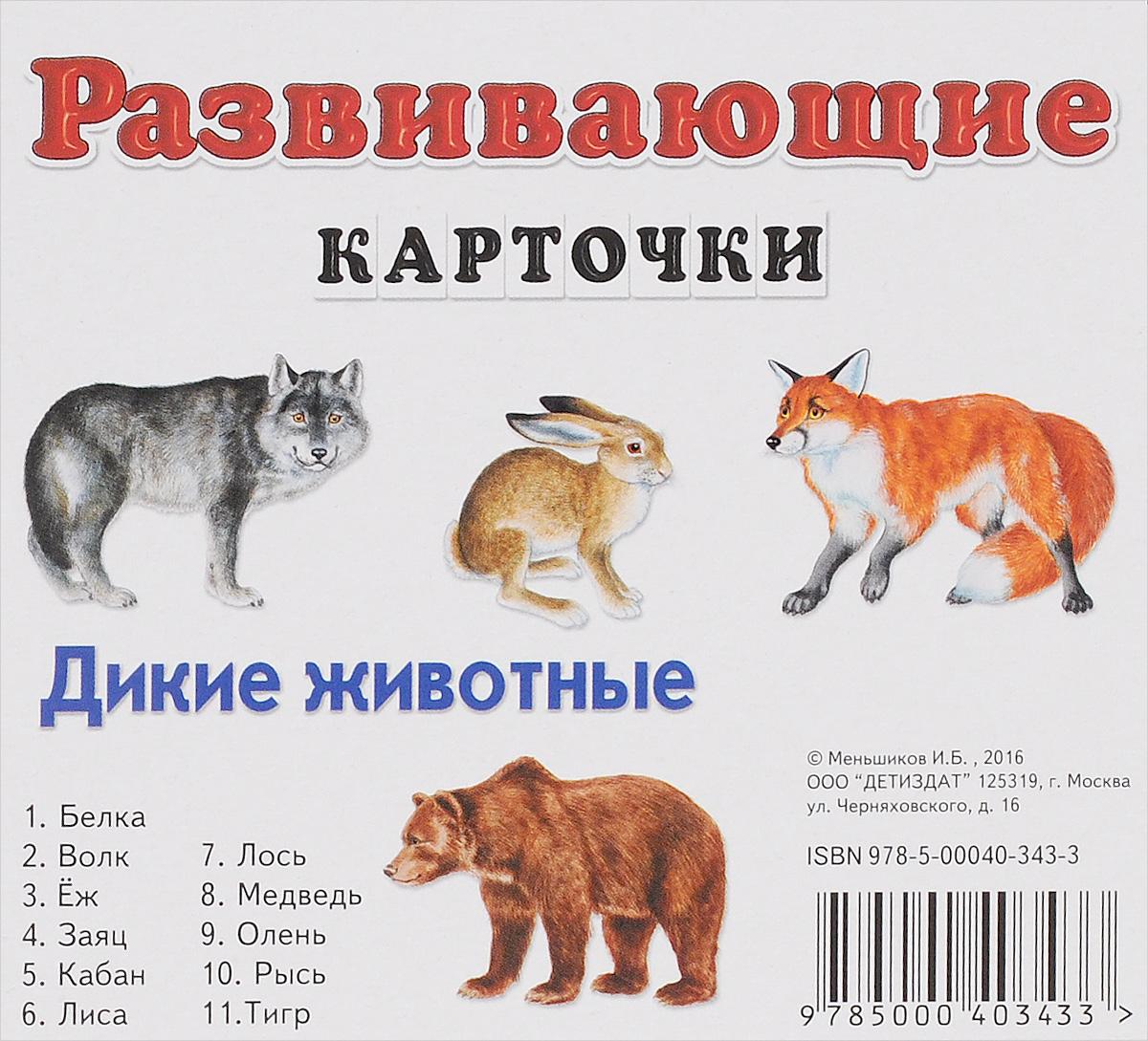 Дикие животные. Развивающие карточки (набор из 11 карточек)