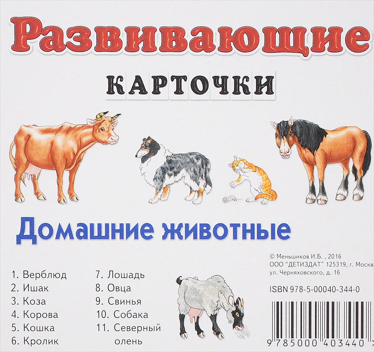 Домашние животные. Развивающие карточки (набор из 11 карточек)