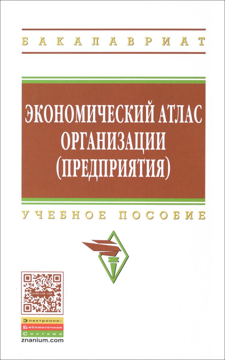 Экономический атлас организации (предприятия). Учебное пособие