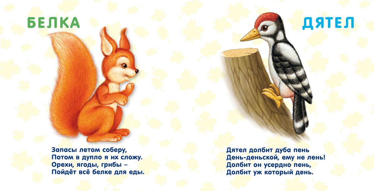 Лесные животные. Стихи и картинки