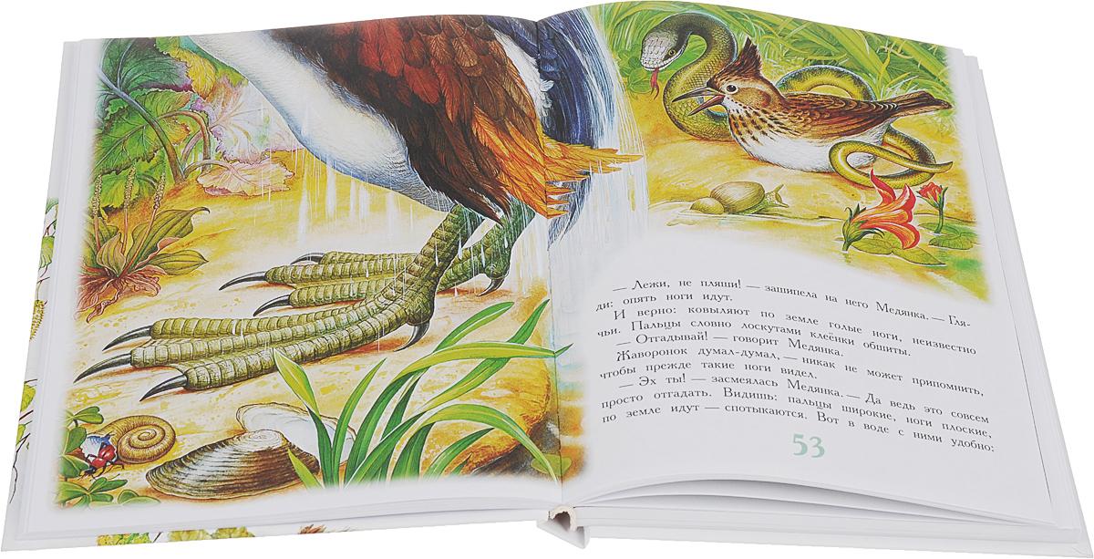 В. Бианки. Сказки для детей