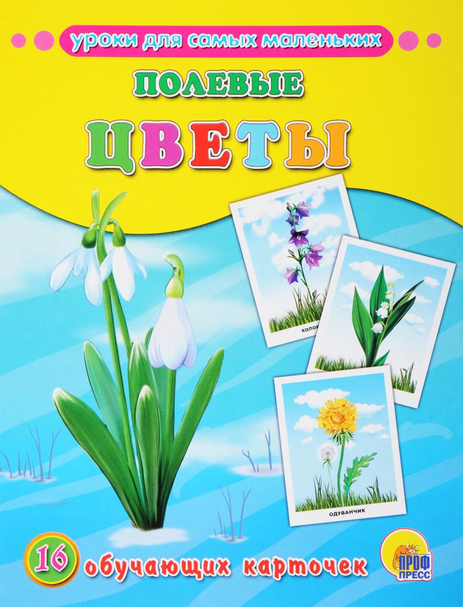 Полевые цветы (набор из 16 обучающих карточек)