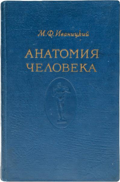 Анатомия человека. Том 2