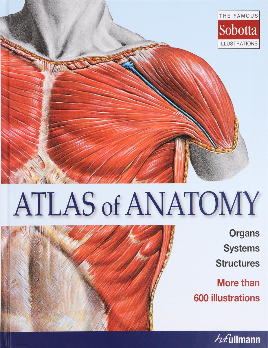 Zakazat.ru Atlas of Anatomy
